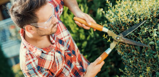Foto Las 5 herramientas básicas para poner a punto el jardín